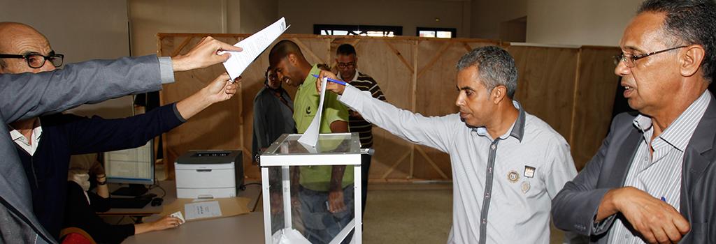 observers-les-elections_2